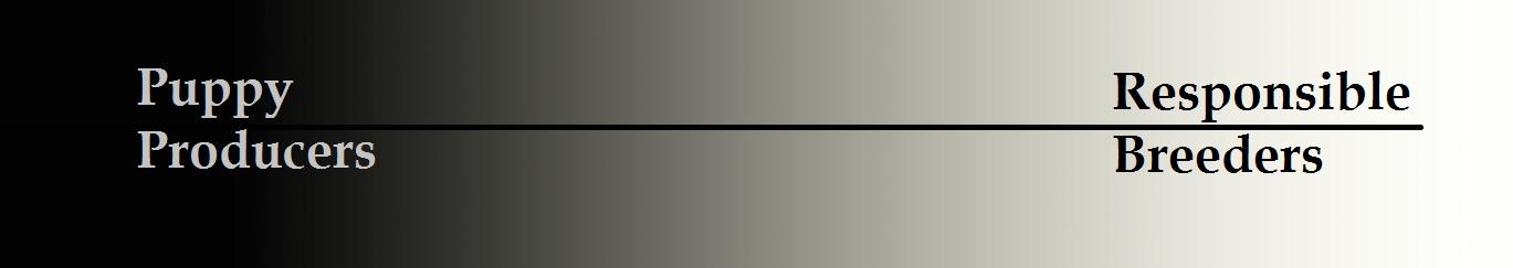 Gradient 2prv
