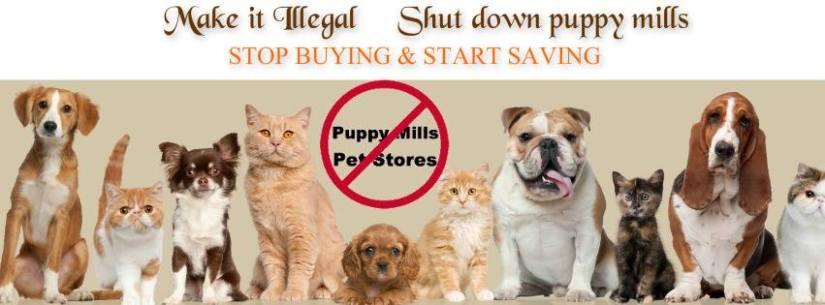ban puppy mills