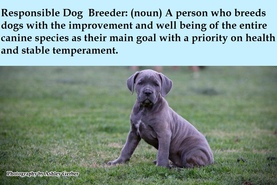 Responsible Breeder Definition
